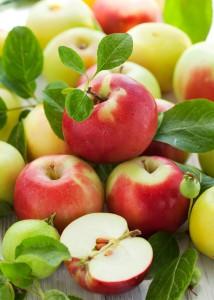 pommes02 214x300 Une pomme par jour éloigne le médecin.