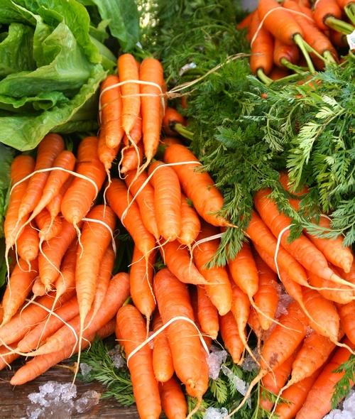 carotte et ses bienfaits