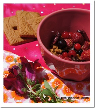crumblefruitsrichesenantioxydants thumb Crumble aux fruits rouges express