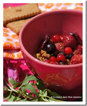 crumblefruitsrougessigne thumb Crumble aux fruits rouges express