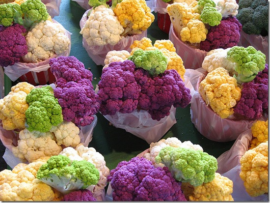 choufleurparJackLetourneauLetoujFlickr thumb Recette de gratin de chou fleur