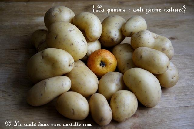 Comment conserver les pommes de terre - Conservation pomme de terre cuite ...