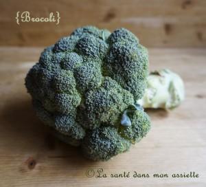 brocoli 300x272 Saison du brocoli