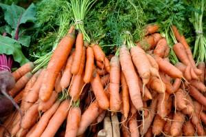 carotte par Farmanac @FlickR 300x199 Saison de la carotte