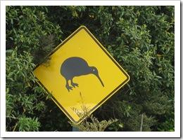 kiwi par Gemstone FlickR thumb Le kiwi, un fruit au nom doiseau