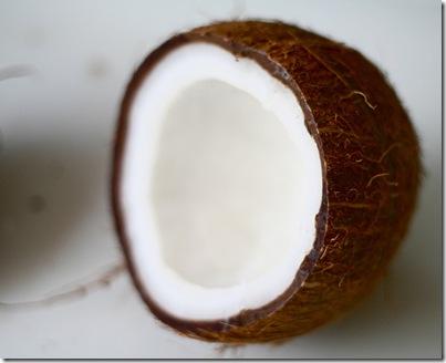 noix de coco par bionicteaching FlickR thumb Ouvrir une noix de coco facilement